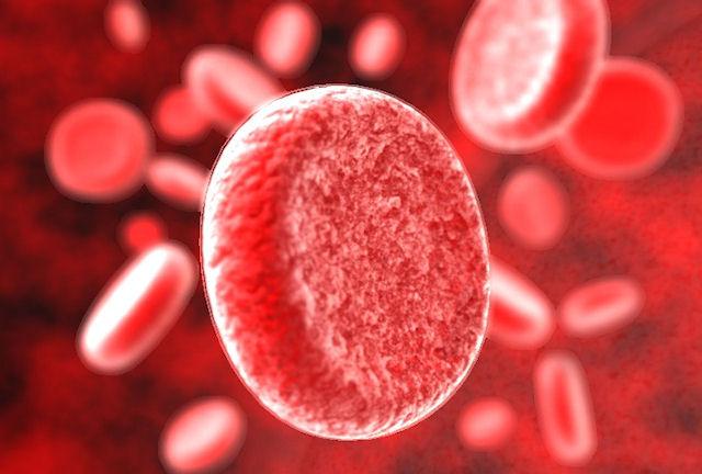Горючее нашей жизни - кровь
