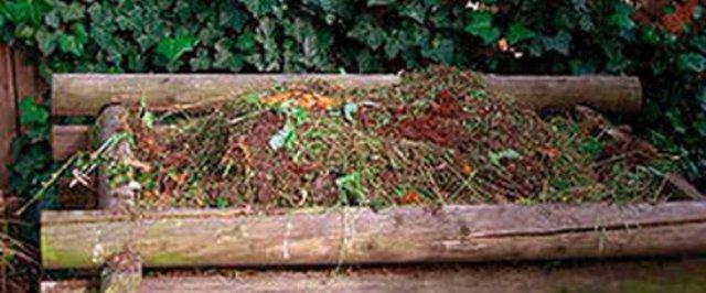 Как лучше сделать компост самостоятельно