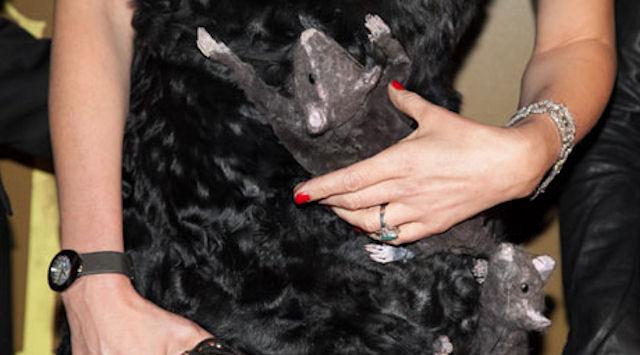 Китайцы шили крысиные пальто