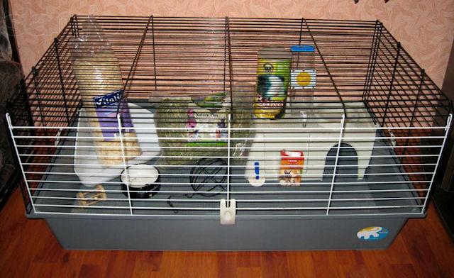 Клетка для крысы своими руками из подручных