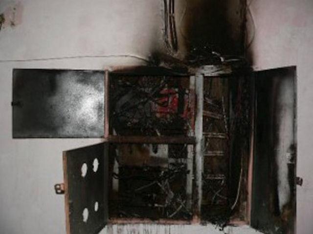 Крыса устроила короткое замыкание и пожар в доме