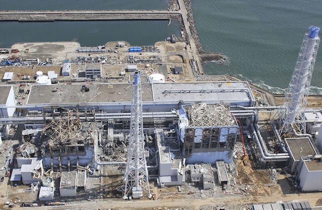 Крысы вызвали сбой в работе электрооборудования на АЭС в Фукусиме