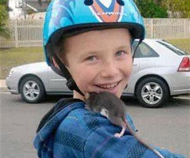 Мальчика убила зараженная крыса