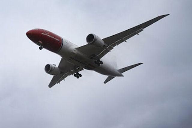 На борту американского самолёта обнаружили 8 мёртвых мышей