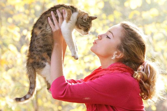 Токсоплазмоз позволяет мышам не бояться кошек
