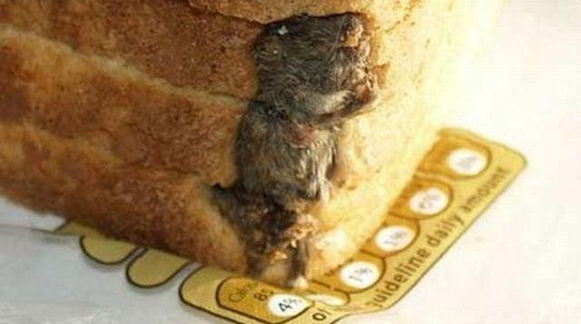 В Австралии продают батоны с мышами