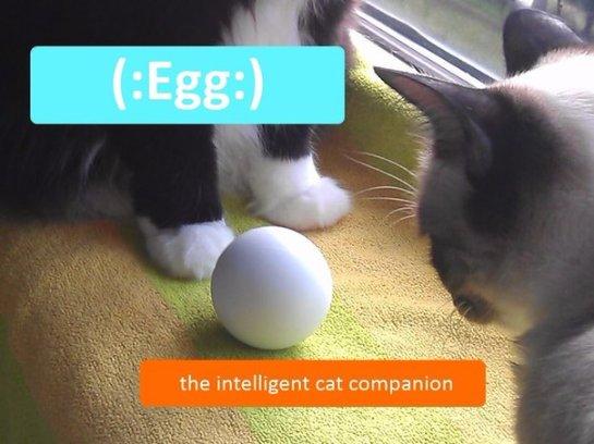 Для кошек придумали