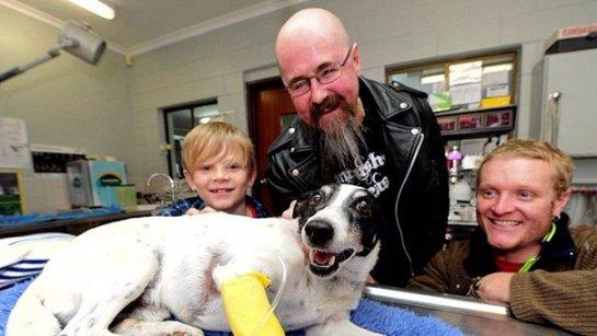 Австралиец сделал собаке искусственное дыхание