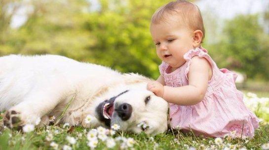 Благодаря домашним животным дети реже болеют астмой