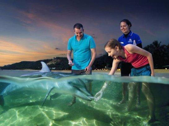 Дельфины дарят подарки учёным