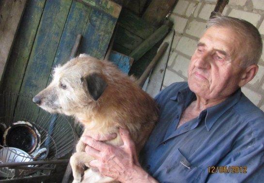 Пенсионер сделал из своего дома приют для собак