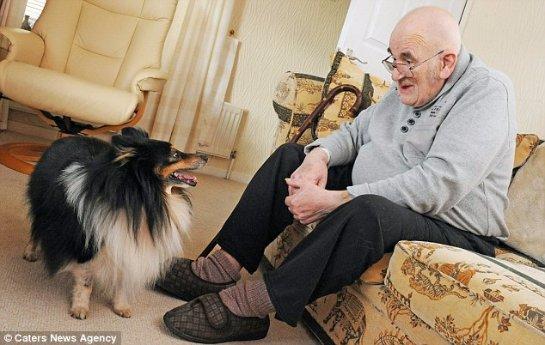 Собака спасла жизнь англичанину