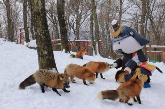 В Японии есть лисья деревня
