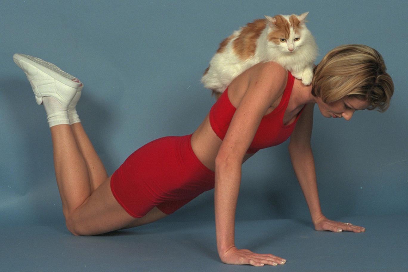 Йога с кошками — новый фитнес-тренд