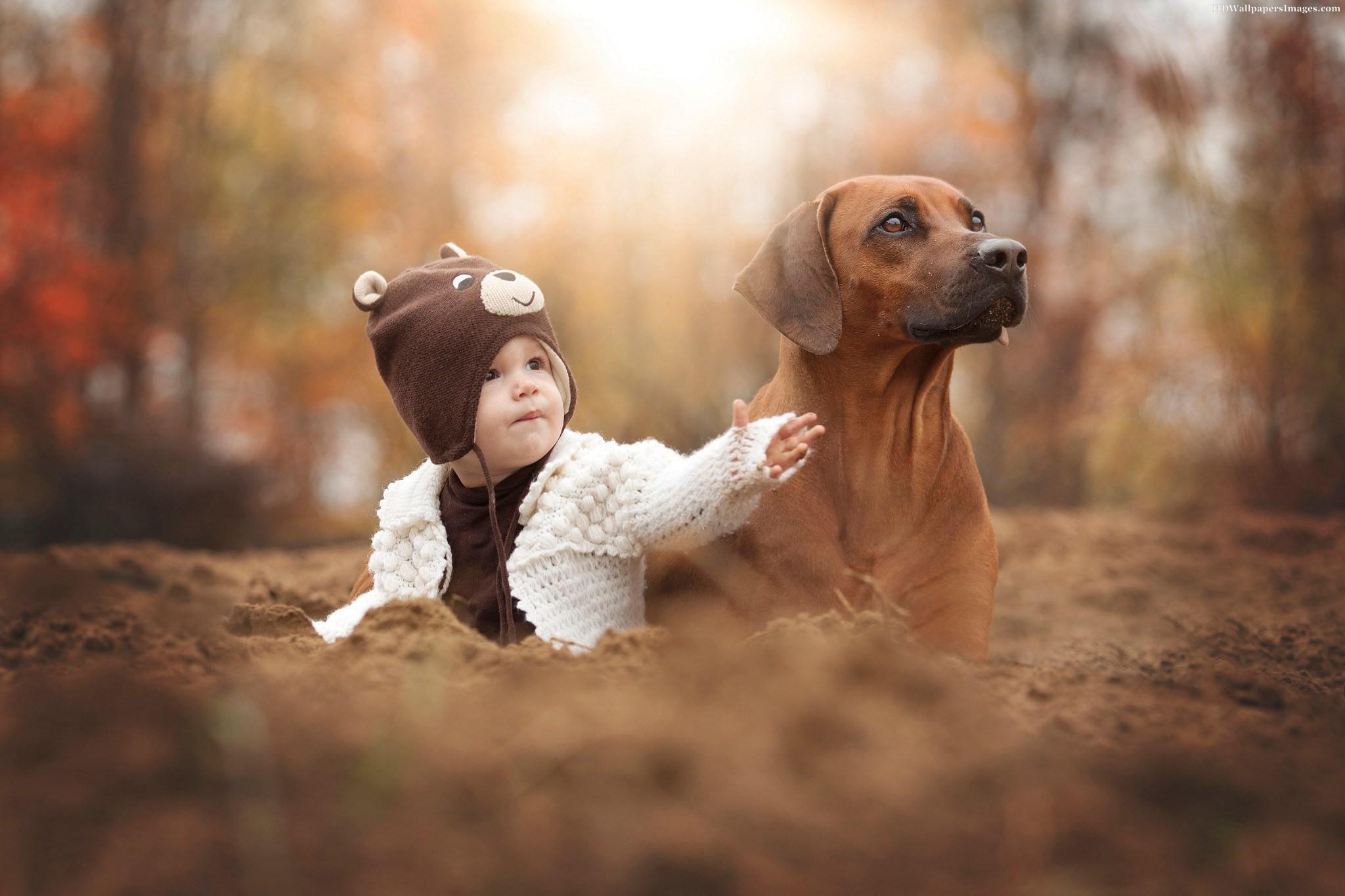 Влияние собак на развитие астмы у детей