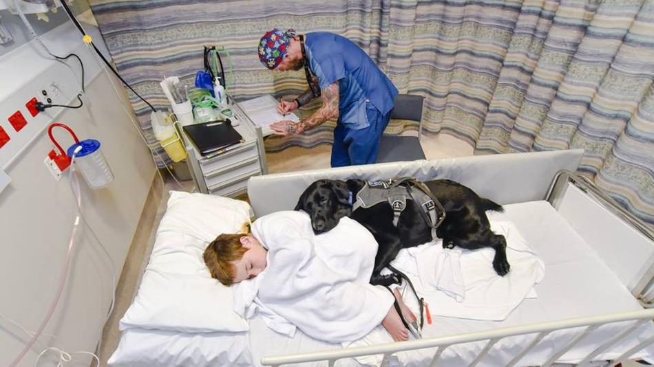 Собака помогает мальчику бороться с аутизмом