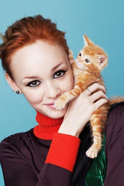 Появилась новая профессия — кошачья няня