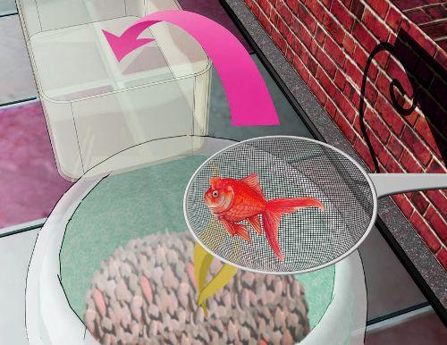 Как менять воду в аквариуме?
