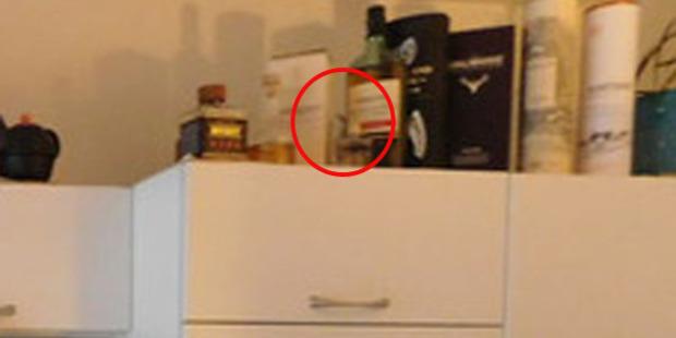 А вы сможете найти на этом фото кошку?