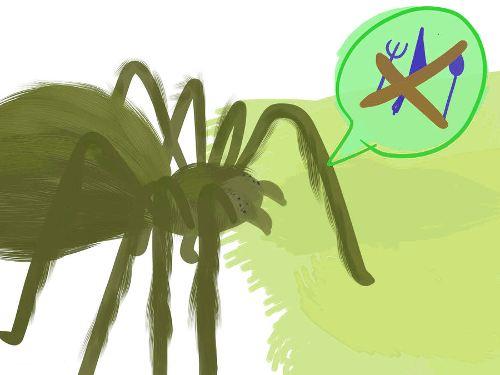 Линька у паука-птициеда