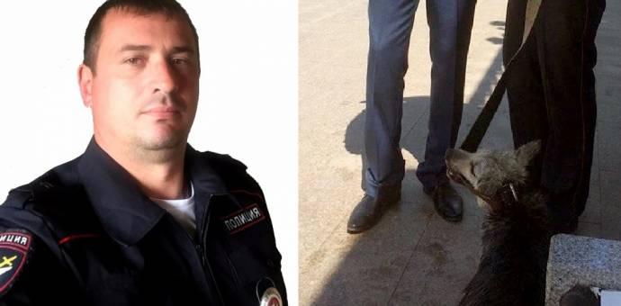 В Иркутске полицейский спас тонущую собаку