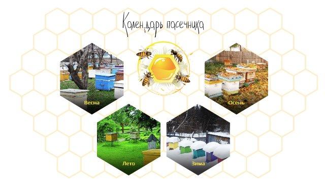 Портал для пчеловодов и любителей меда